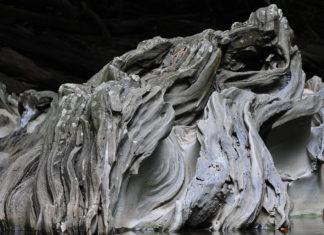 Foto: Cortesía del Cañón de Río Claro Reserva Natural. Lo que se observa en la foto es un roca del paisaje kárstico.