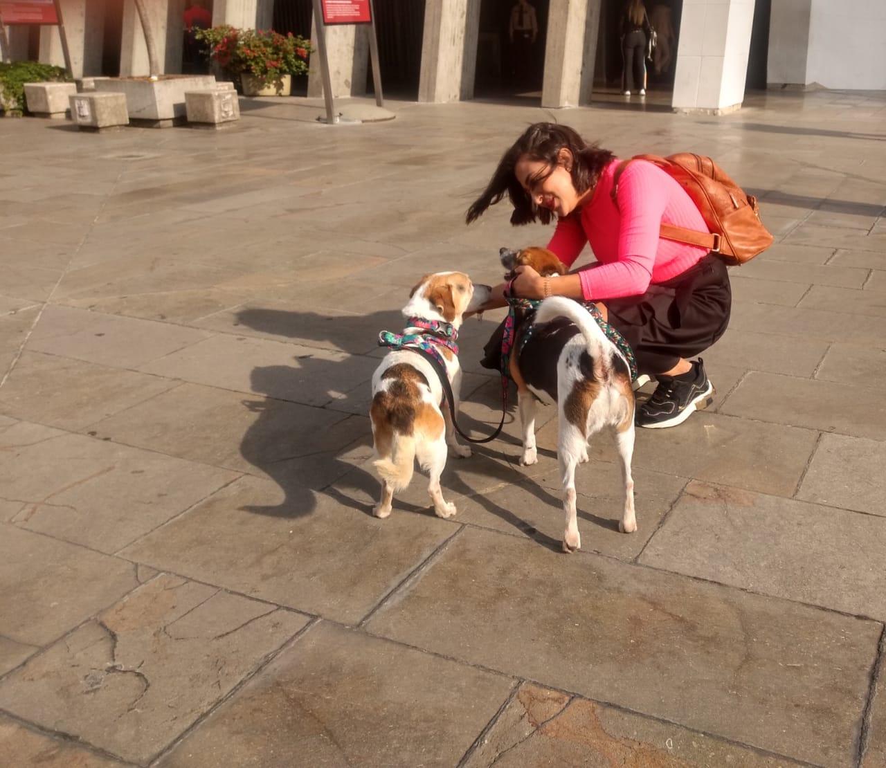 Eliana García, diseñadora del despacho de la Gestora Social pasea y consiente a las mascotas que le han tomado gran cariño. Foto: Mariluz Palacio Úsuga.